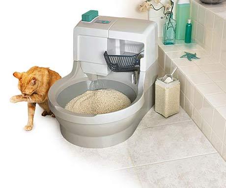 CatGenie cat toilet