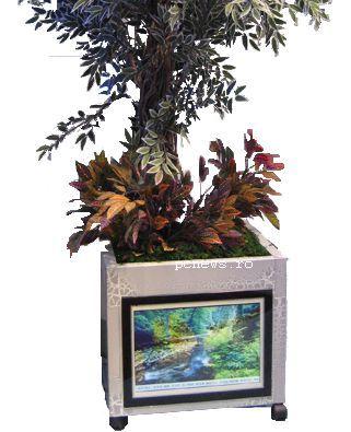 ghiveciul cu LCD