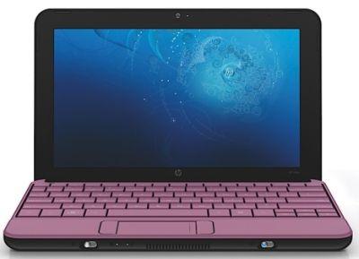 netbook roz